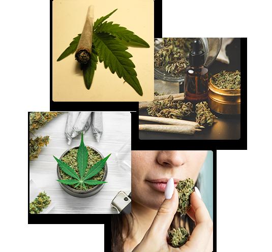 Comment consommer du cannabis en fleurs